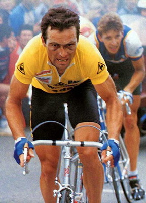 Hinault2_display_image