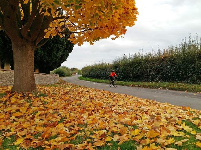 Kajsa Autumn